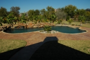 <h5>Backyard Pool Design - Allen</h5><p>Signature Pools & Spas - Custom Swimming Pools</p>