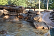 <h5>S</h5><p>Signature Pools & Spas - Custom Swimming Pools</p>