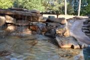 <h5>S</h5><p>Signature Pools & Spas - Custom Swimming Pools</p>