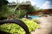 <h5>Fences and Gates - Argyle</h5><p>Signature Pools & Spas - Custom Swimming Pools</p>