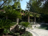 <h5>Trellises - Murphy</h5><p>Signature Pools & Spas - Custom Swimming Pools</p>