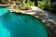 <h5>Landscape Design - Highland Park</h5><p>Signature Pools & Spas - Custom Swimming Pools</p>