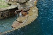 <h5>Custom Pool Design - Carrollton</h5><p>Signature Pools & Spas - Custom Swimming Pools</p>